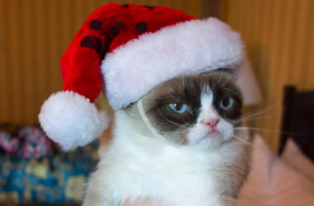 Qui sont ces gens qui boycottent les fêtes ?