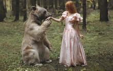 Les superbes photos animalières de Katerina Plotnikova