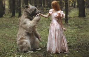 Lien permanent vers Les superbes photos animalières de Katerina Plotnikova