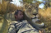 Des câlins à des lions filmés par une GoPro