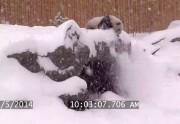 Un panda se roule dans la neige à Toronto