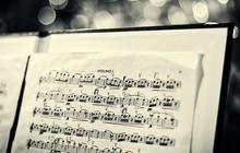 Le snobisme musical, cette plaie de la vie en société