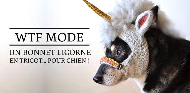Un bonnet licorne en tricot… pour chien ! — WTF Mode