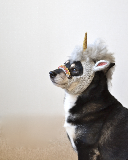 Top Un bonnet licorne en tricot pour chien ! — WTF Mode KU61