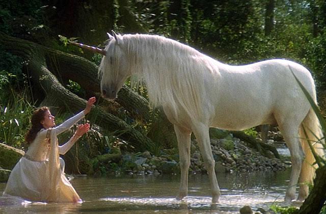quizz connais tu bien l univers des licornes