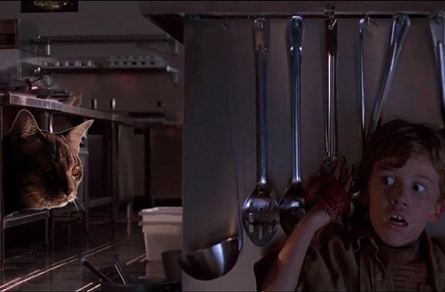 La scène des raptors dans la cuisine de Jurassic Park… avec des chats ?