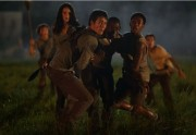 The Maze Runner (Le Labyrinthe) a un nouveau trailer !