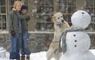 Lien permanent vers Top 5 (subjectif) des chiens au cinéma