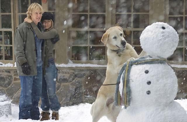 Top 5 (subjectif) des chiens au cinéma