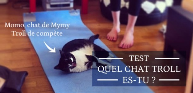 Test — Quel chat troll es-tu ?