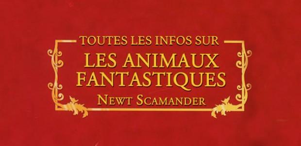 Les Animaux Fantastiques sera réalisé par…