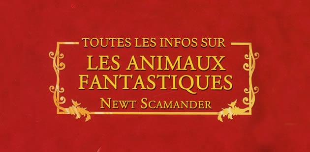 «Les Animaux Fantastiques » se dévoile dans une nouvelle vidéo