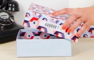 Lien permanent vers Birchbox et Papier Tigre s'associent pour une box beauté rugissante