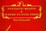 Les Animaux Fantastiques sera réalisé par...