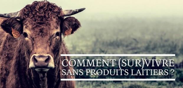 Comment (sur)vivre sans produits laitiers?