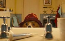 Paddington, le film, lance une campagne pour adopter des ours en peluche
