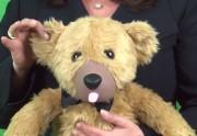 Lien permanent vers L'ours en peluche vibrant, le sextoy qui anéantit ton enfance