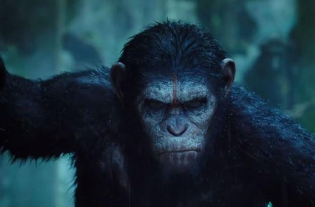 «La Planète des Singes : L'Affrontement»se dévoile dans un dernier trailer