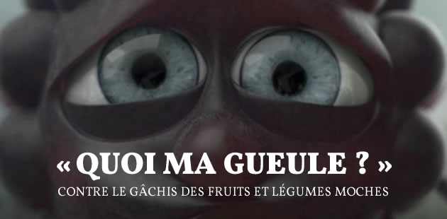 big-gueules-cassees-gachis-fruits-legumes