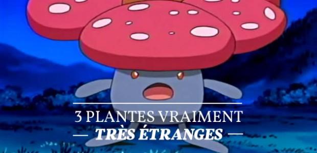 3 plantes vraiment très étranges