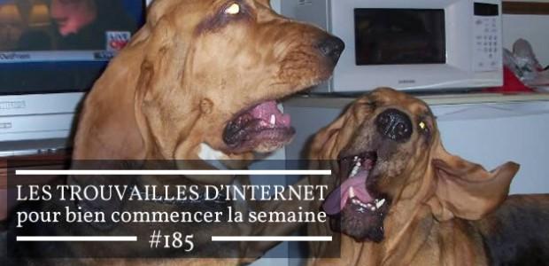 Les trouvailles d'Internet pour bien commencer la semaine #185
