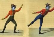 Lien permanent vers Dans Ton Flux n°9 – chats maléfiques, poupées gonflables et Christine Boutin