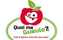 « Quoi ma gueule ? », contre le gâchis des fruits et légumes moches