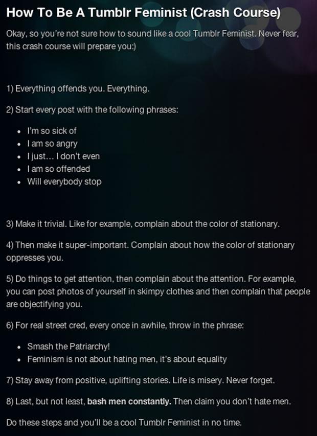 « Femmes contre le féminisme » : décryptage dun paradoxe waf tumblr feminist