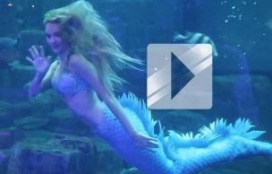 Lien permanent vers Claire la Sirène bleue et son spectacle en vidéo