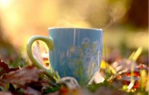 Lien permanent vers Le thé pour les nulles : comment s'y mettre et découvrir l'art du thé ?