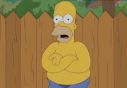 Homer Simpson a relevé le Ice Bucket Challenge