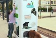 Lien permanent vers Des bouteilles recyclées pour nourrir les chiens errants