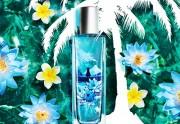 Lien permanent vers Fleur de lotus de Fidji, la nouvelle gamme de The Body...