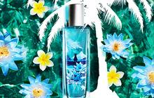 Fleur de lotus de Fidji, la nouvelle gamme de The Body Shop