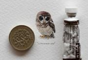 365 Postcards for Ants, les mini-tableaux de Lorraine Loots