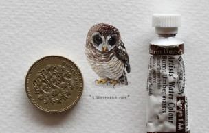 Lien permanent vers 365 Postcards for Ants, les mini-tableaux de Lorraine Loots