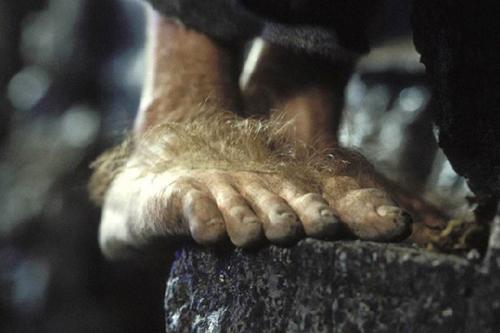 1378489957_hobbit_feet_rect