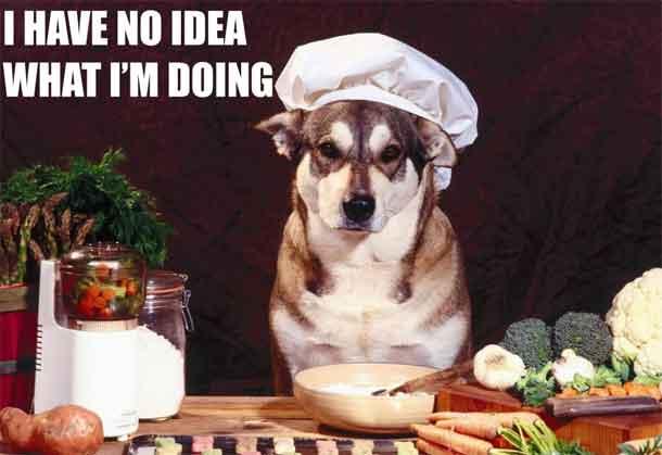 chien_cuisiner