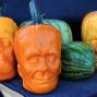 Des citrouilles Frankenstein, pour fêter Halloween comme il se doit