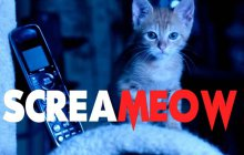 Screameow : Scream, mais avec des chatons
