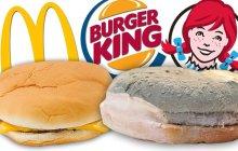 À quelle vitesse les burgers moisissent-ils ? Réponse en vidéo