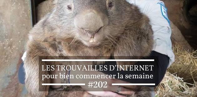Les trouvailles d'Internet pour bien commencer la semaine #202