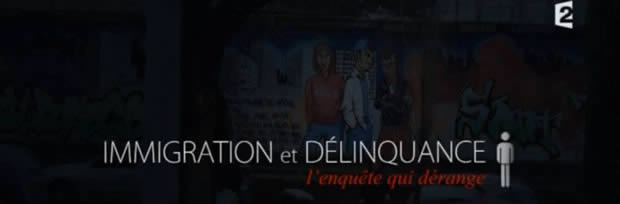 immigration-delinquance-enquete-1