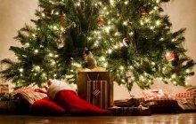 Trouve le cadeau de Noël idéal avec MonShowroom !