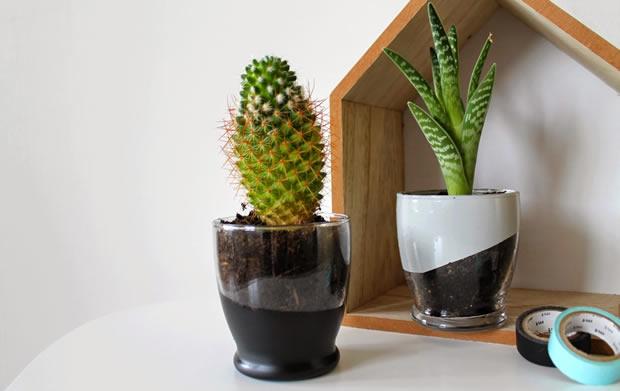 diy transformer un verre en pot pour de petites plantes. Black Bedroom Furniture Sets. Home Design Ideas