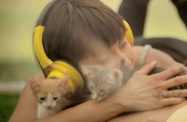 La thérapie anti-stress par les chatons, une vidéo beaucoup trop mignonne