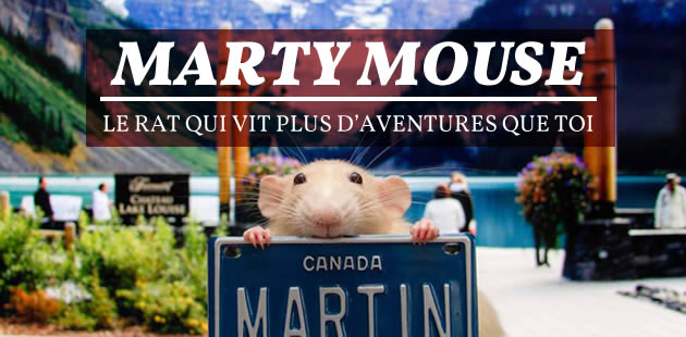 Marty Mouse, le rat qui vit plus d'aventures que toi