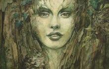 Sélection de beaux livres de fantasy