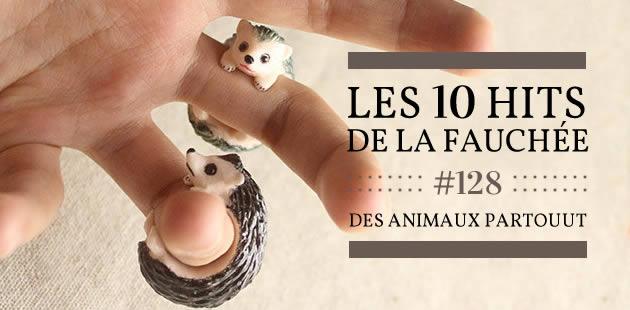 Les 10 Hits de la Fauchée #128 — Des animaux partouuut !