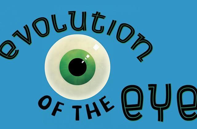 L'évolution de l'oeil, un mini-documentaire fascinant